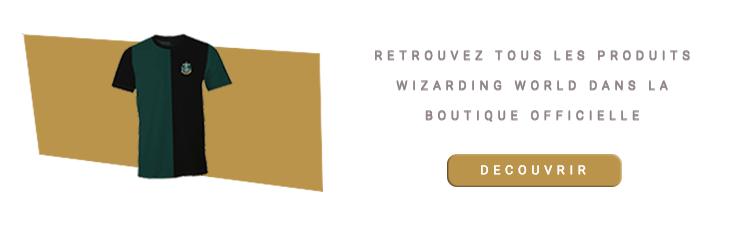 T-shirt Serpentard Quidditch Quidditch Team vert