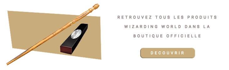 Baguette magique Vincent Crabbe