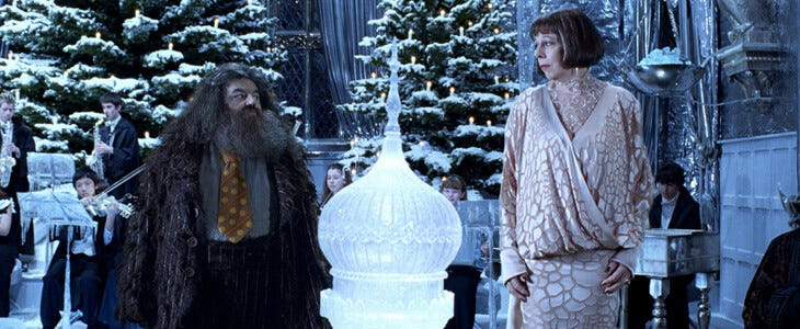 Frances de la Tour dans Harry Potter et la Coupe de Feu