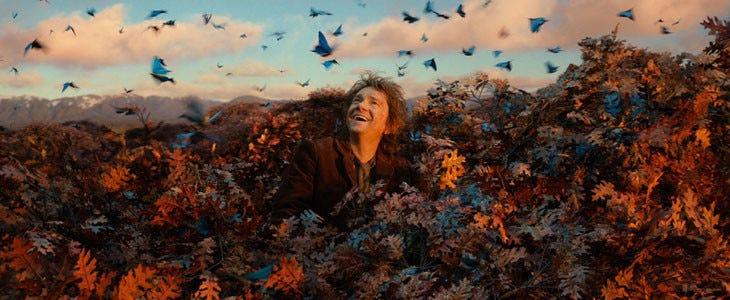 Coffret intégrale Le Hobbit Le Seigneur des Anneaux.