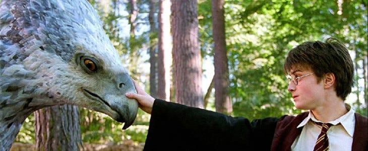 Harry Potter et l'hippogriffe Buck dans le troisième volet de la saga