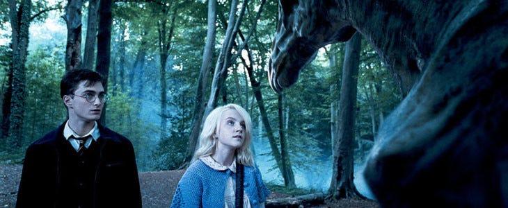 Harry Potter et Luna Lovegood - Forêt Interdite