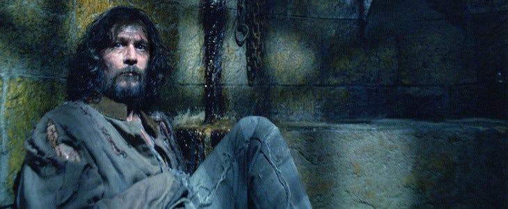 Gary Oldman joue Sirius Black dans la saga Harry Potter